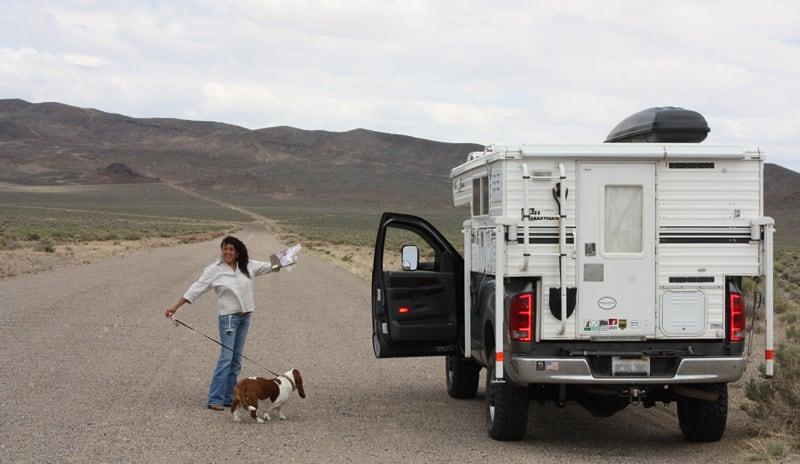 Dog Walk Break In The Desert