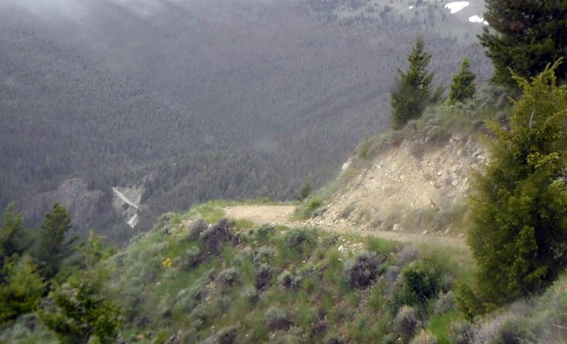 Gummy Bear Road Montana