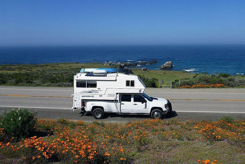 The Pacific Coast Hwy Wildflowers