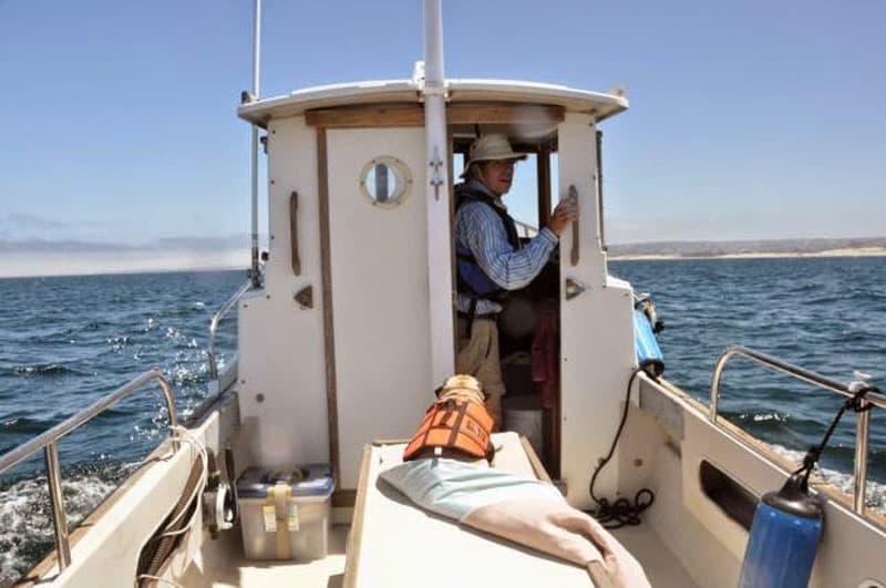 Tugboat Four Wheel Camper Pug Dog