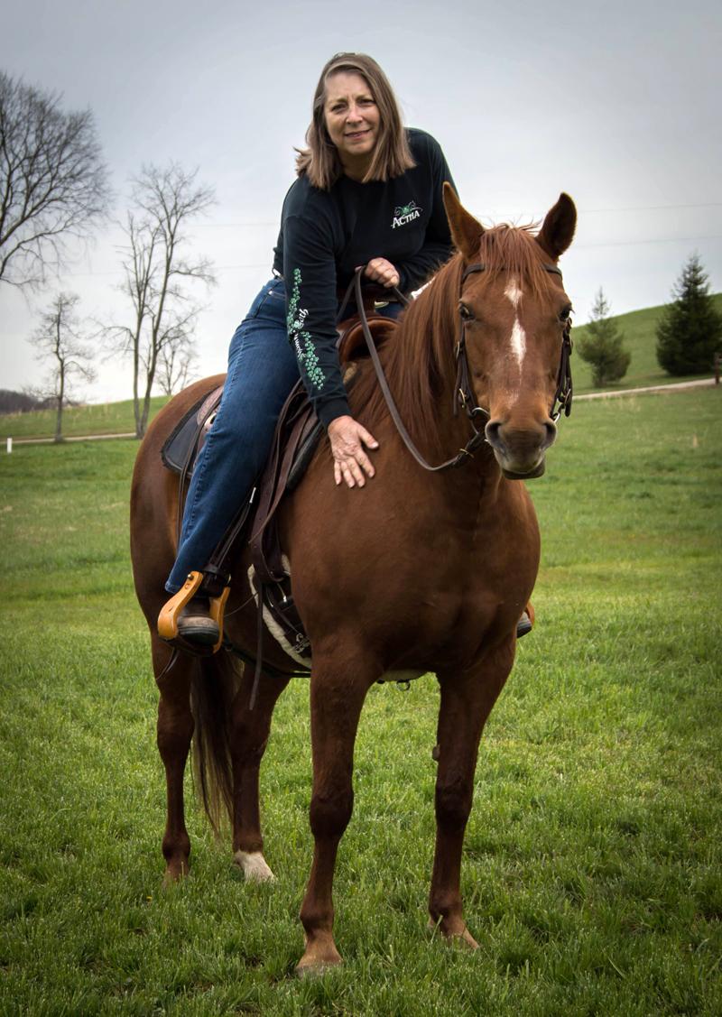 Missouri Fox Trotting Horse