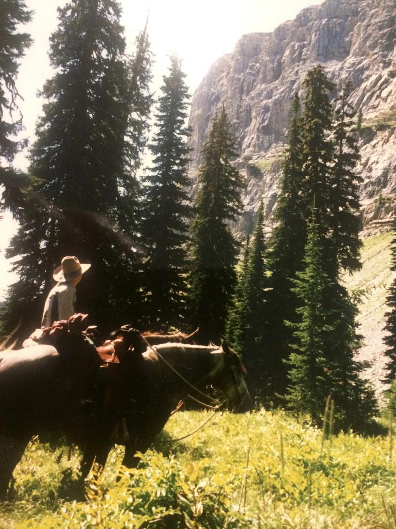 Missouri Fox Trotting Horses Trail Riding