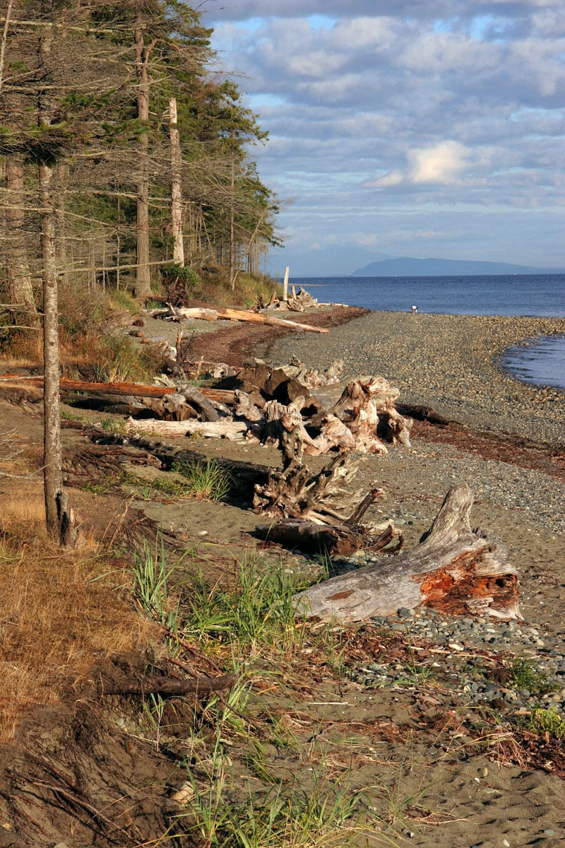 Coast Between Comox Or Nanaimo