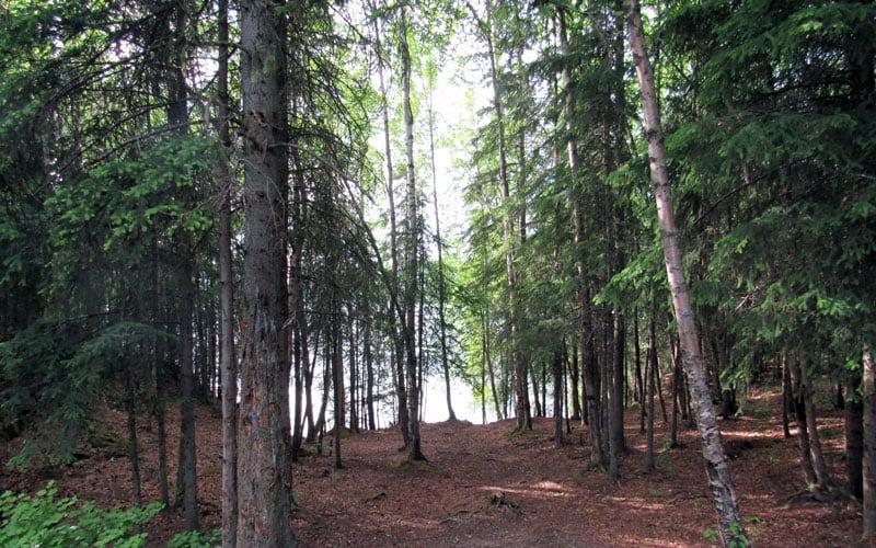 Hidden Lake Campground Wolf Creek 850