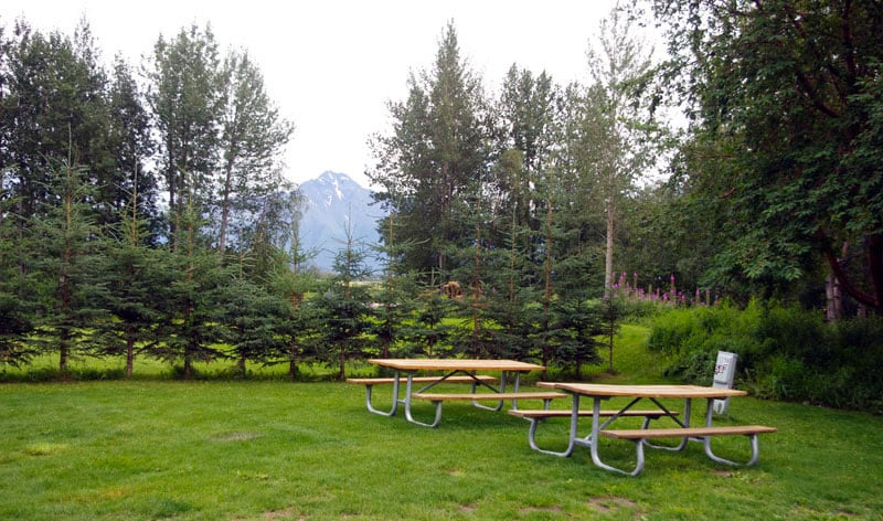 US Forestry Campground At Stony Point