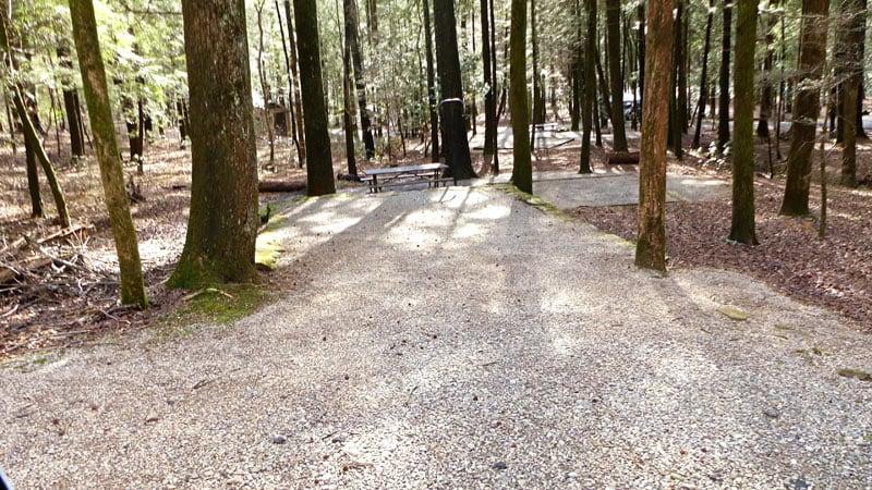 DeSoto Falls Campsites in Georgia