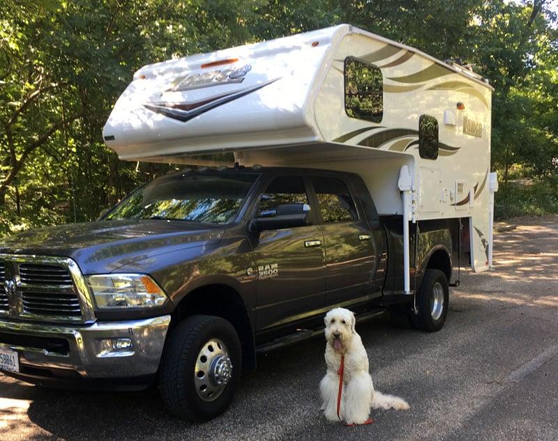 Golden Doodle Camping In Lance Camper