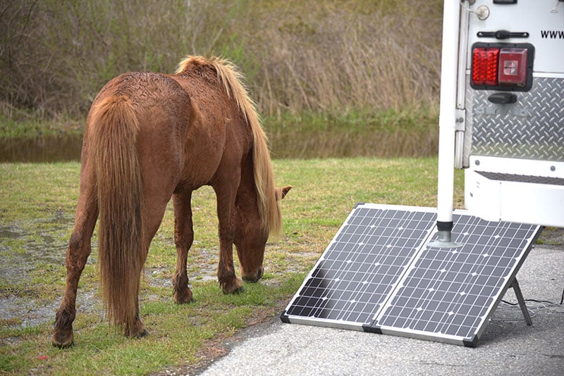 Portable Solar At Assateague National Park Campground