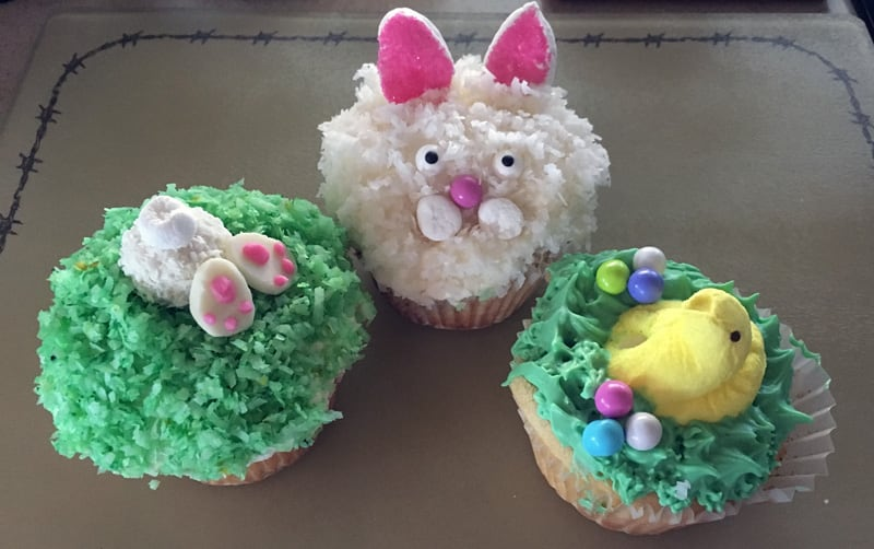 Convection Oven Cupcakes Camper