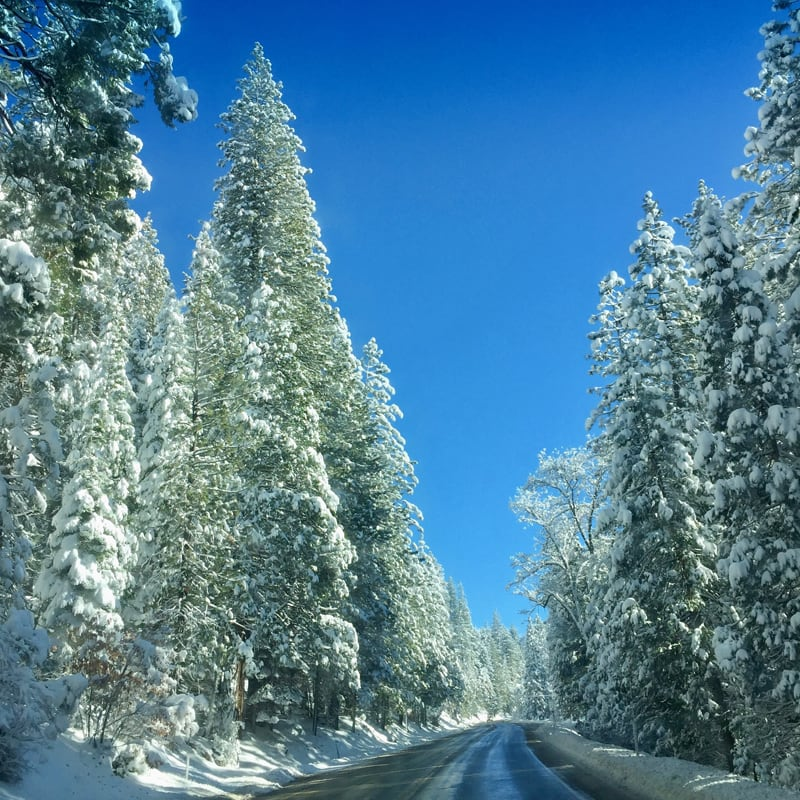 Snowy Drive Back To Woodland California