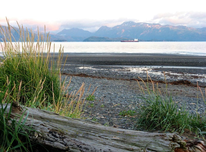 Mariners Park In Homer AK