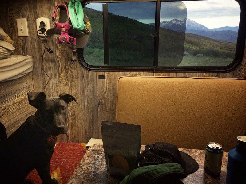 Dexter In Camper
