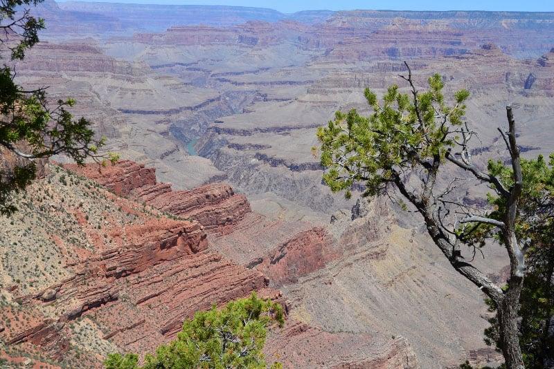South Rim Grand Canyon View Point