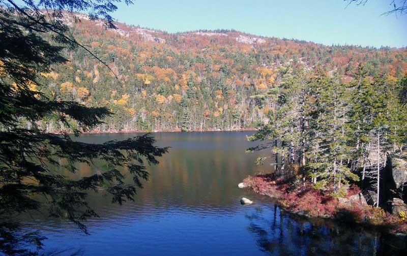 Hidden Ponds Trail