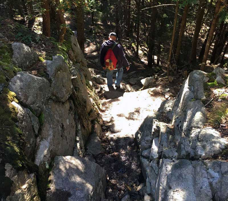 Schoodic Head Trail Hike