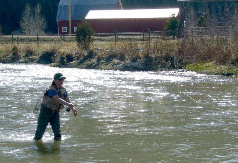 Fly Fishing On Streams In The Rocky Mountains