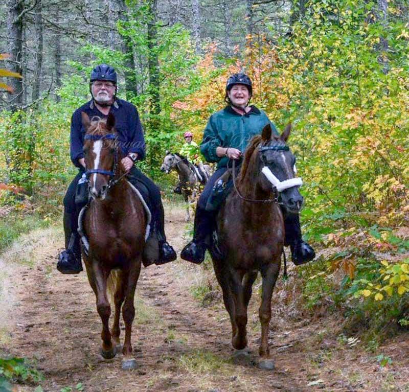 Horse Trail Riding
