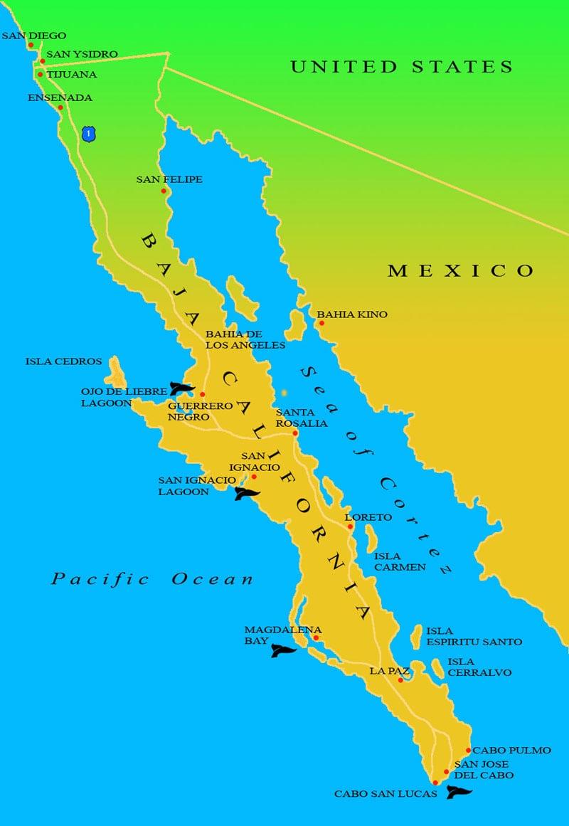 Baja Map From BajaEcotours