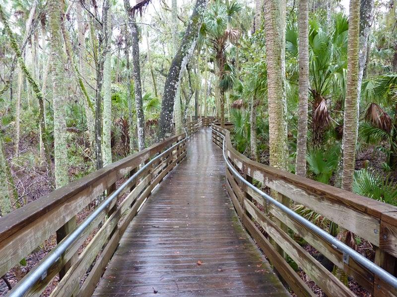 Blue Spring Boardwalk Path