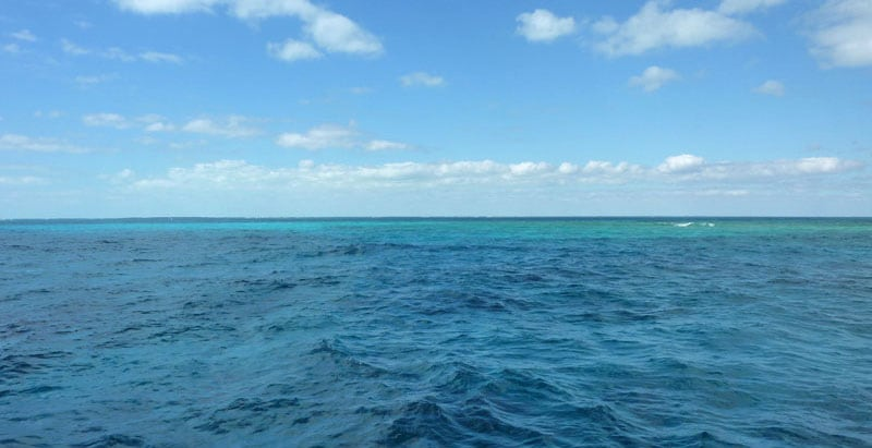 Blue Green Water Of The Florida Keys