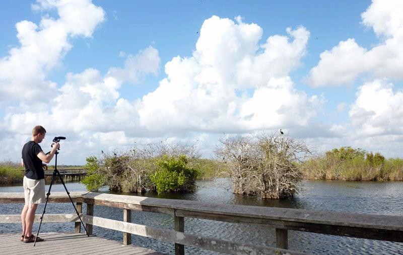 Photos On The Anhinga Trail Everglades