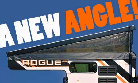 Palomino Rogue New Angle
