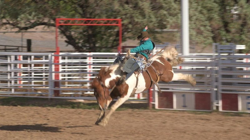 Capri Rodeo Wrights on 60 Minutes