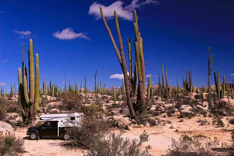 Boondocking Among The Giant Cactus In Catavina Desert