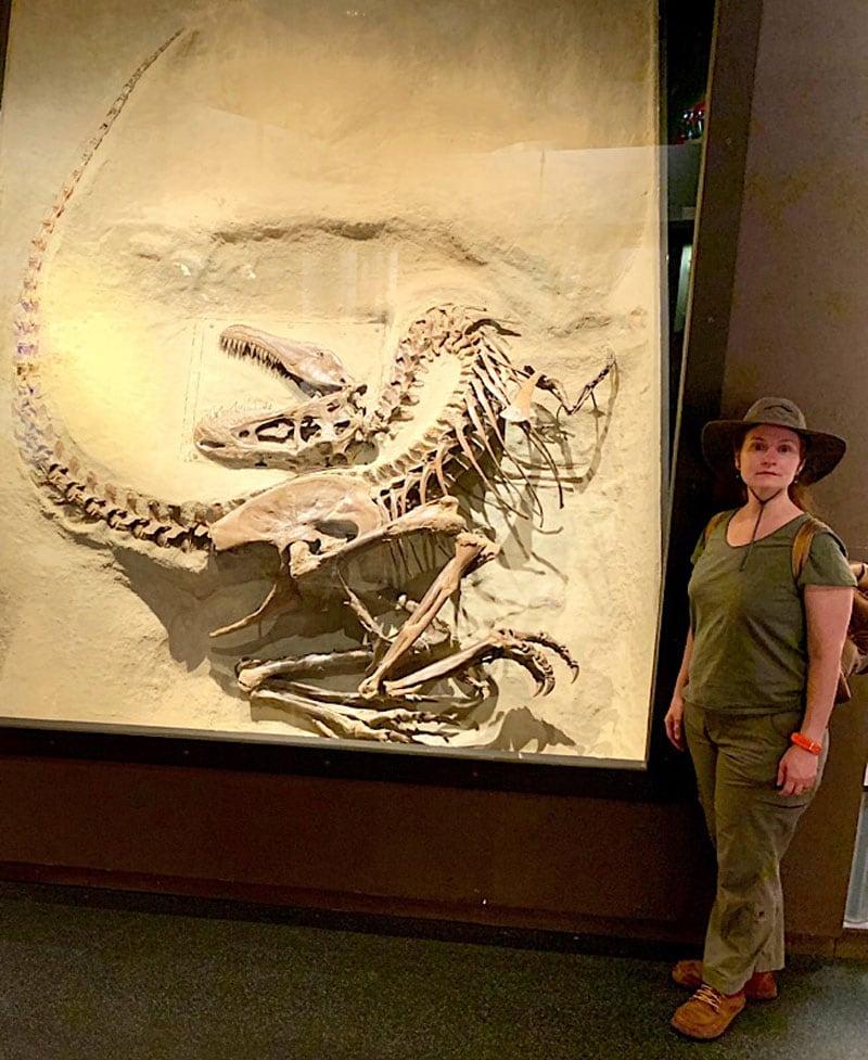 Royal Tyrrell Gorgosaurus With Kira