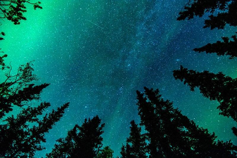 Auroras At Riley Creek Campground In Denali National Park Alaska