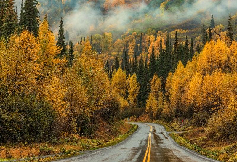 Yukon Road In The Fall