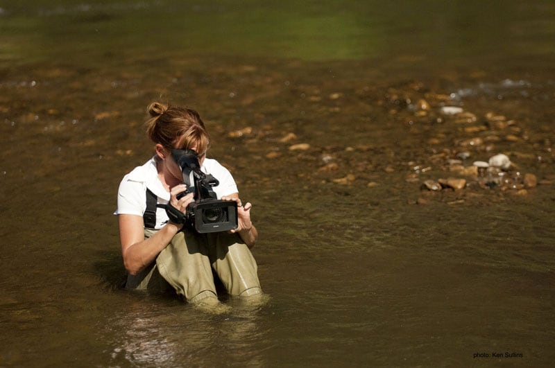 In Water Filming Chinook Salmon Idaho