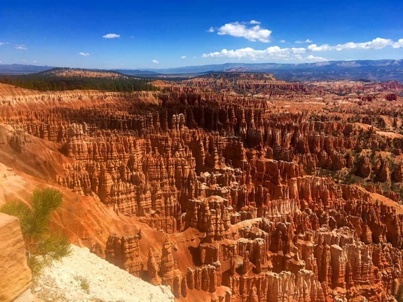 Amphitheater At Bryce Canyon National Park