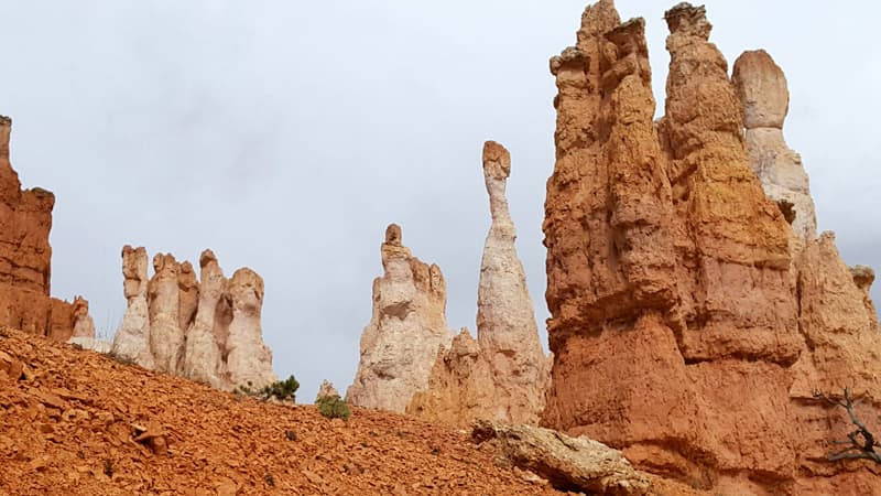 Big Toe In Bryce National Park