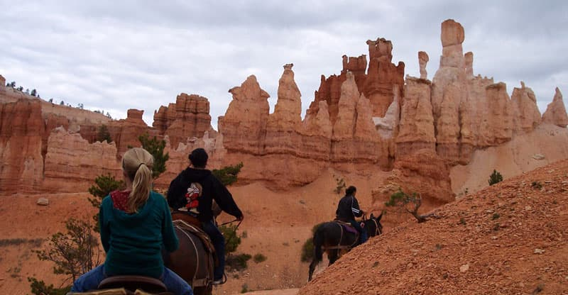 Mule Ride Through Bryce Canyon National Park
