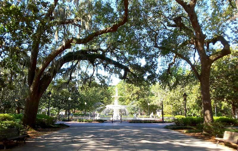 Savannah Georgia Gardens