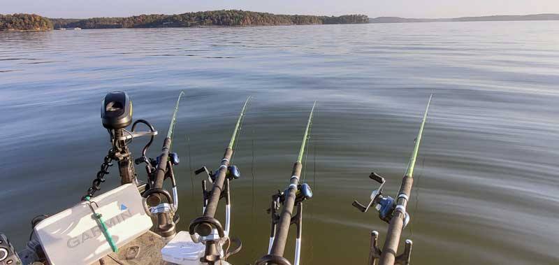 Rods In The Water