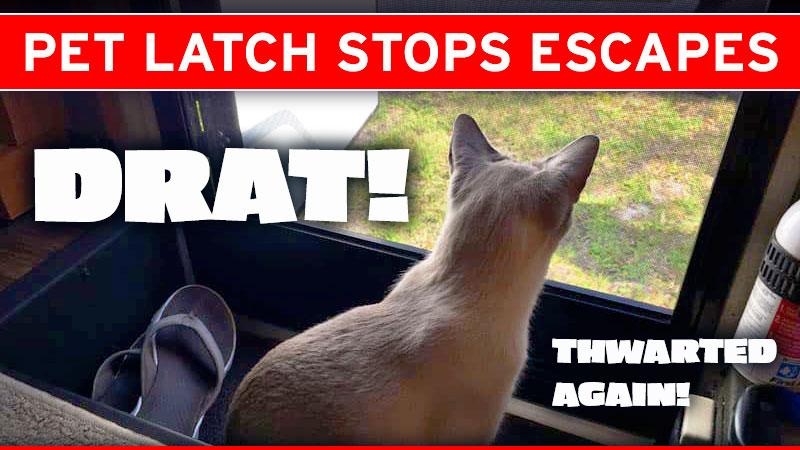 Cat Latch To Prevent Cat Break Out