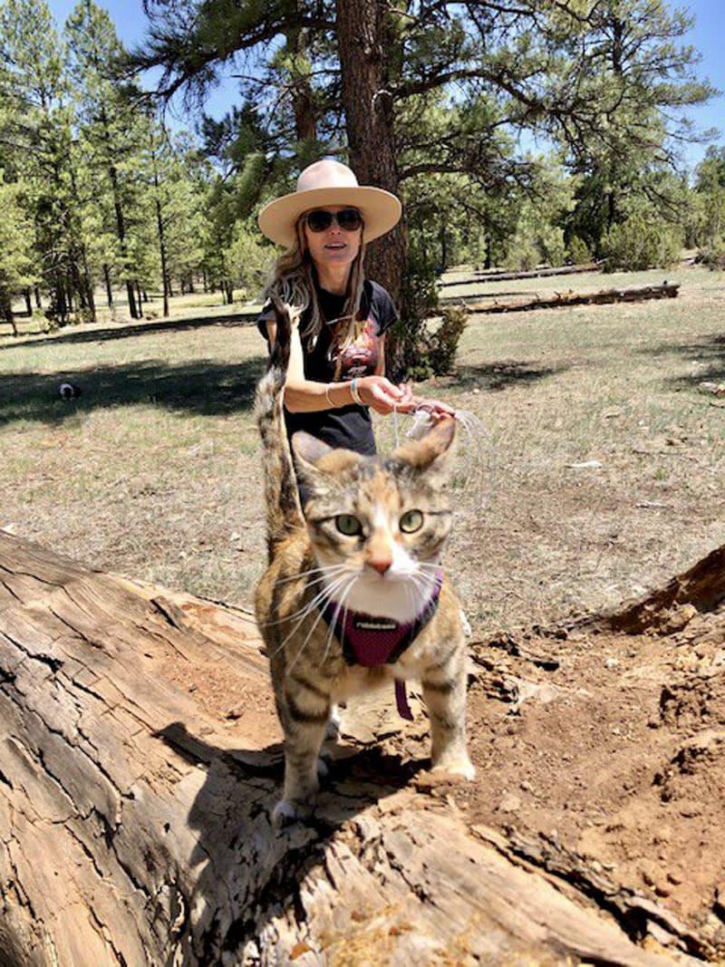 Maisie In Backcountry Arizona