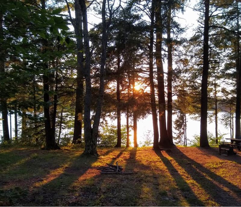 North Gemini Lake State Forest Campground