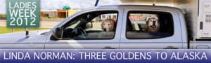 3-goldens-four-wheel-camper