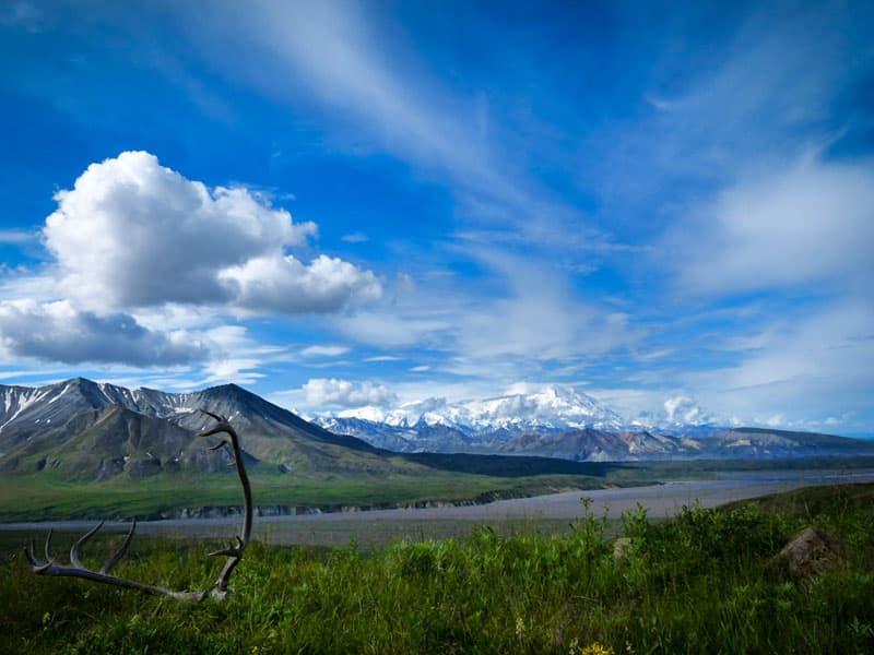 Denali view of summit