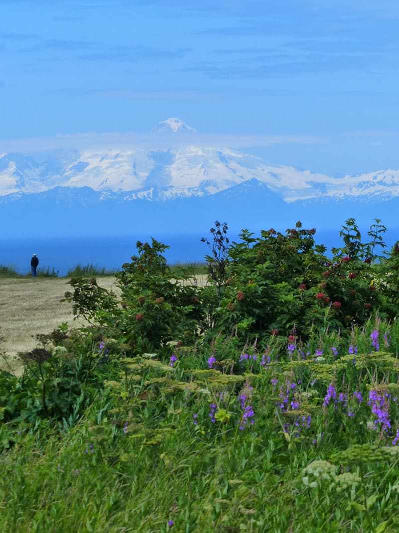 Mount Redoubt (10,197 feet) across Cook Inlet from the campground