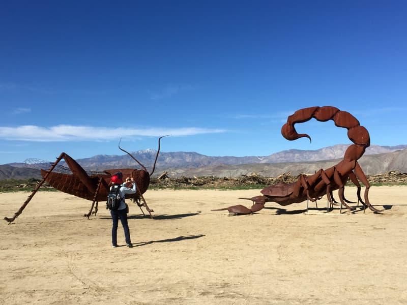 Anza Borrego bug sculptures