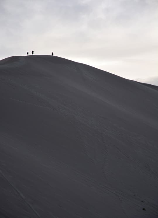 Arctic-Fox-990-Really-Big-Dunes