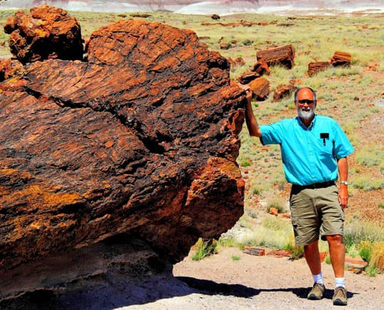boondock-Petrified-Forest-Natl-Park