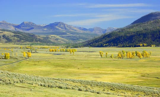 boondock-Yellowstone-Natl-Park-Lamar-Valley