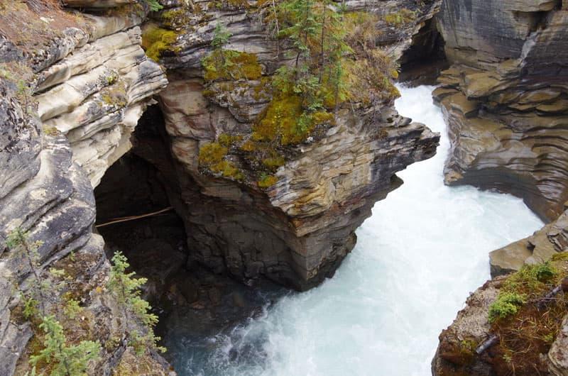 Athabasca Falls Canadian Rockies