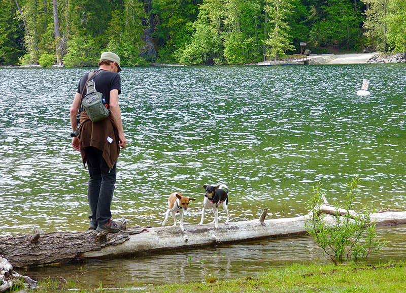 Hiking at Birkenhead Provincial Park