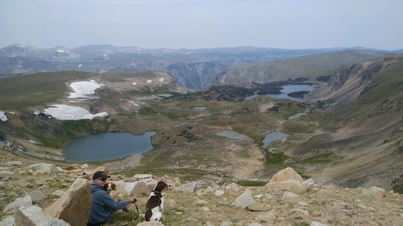 Beartooth Highway Scenery Brittany Spaniels